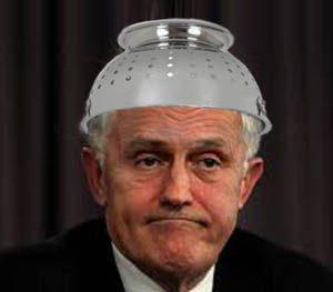 CSIRO and Turnbull.